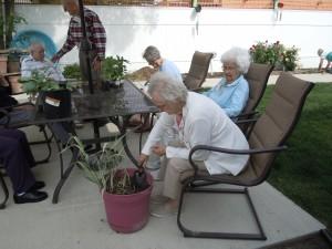 2011 gardening